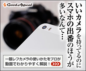 c300_250_01.jpg